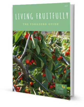 The Foragers Guide, Living Fruitfully